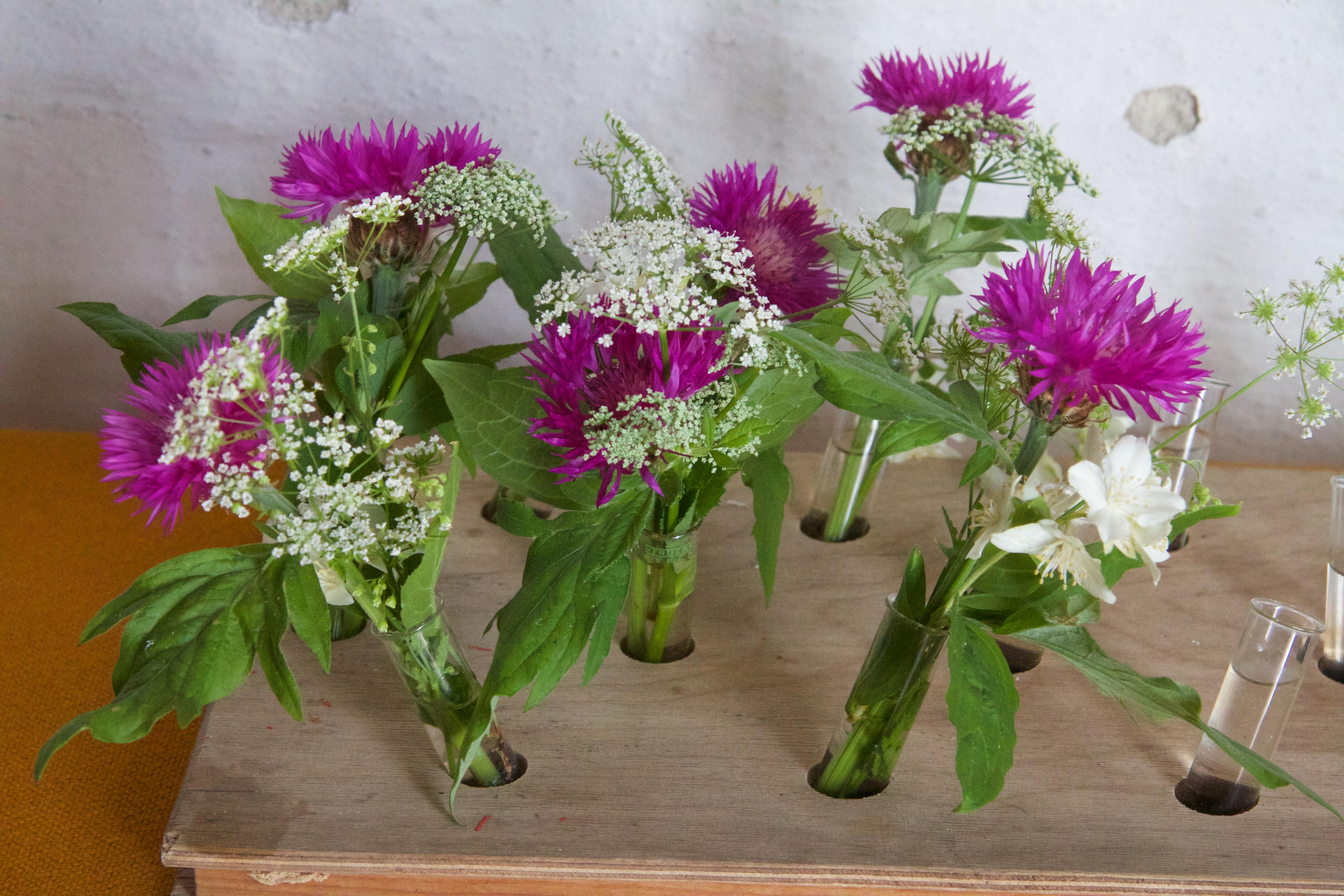 Menigheden pynter med blomster fra grøft og have ved almindelige højmesser i Kornerup Kirke